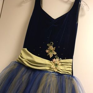 Other - Dance Costume with Tulle Skirt